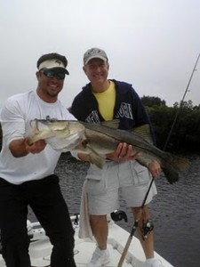 Quality Snook fishing a river in Tampa Bay