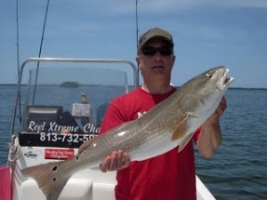 Fishing Tampa for Redfish