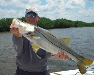 Tampa Bay Snook Fishing